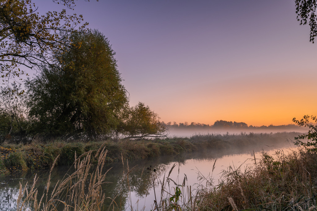 Herbstmorgen Allerwiesen