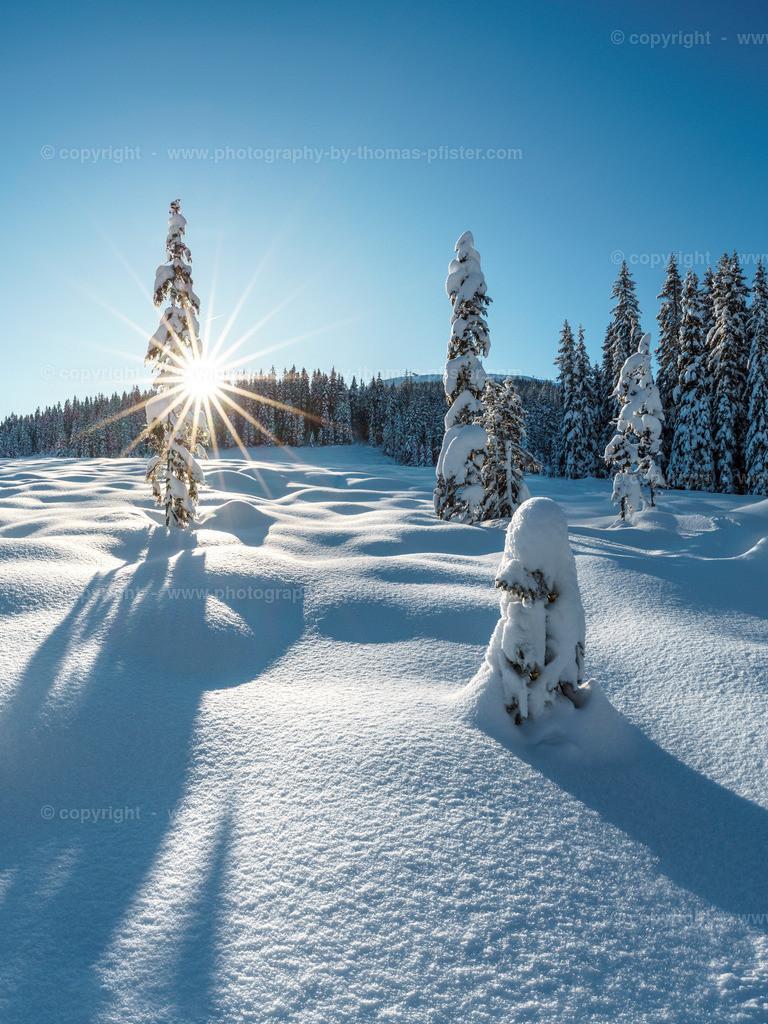 Winterlandschaft auf der Gerlosplatte-2