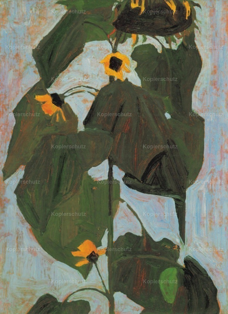 Schiele_ Egon (1890-1918) - Sunflower 1908