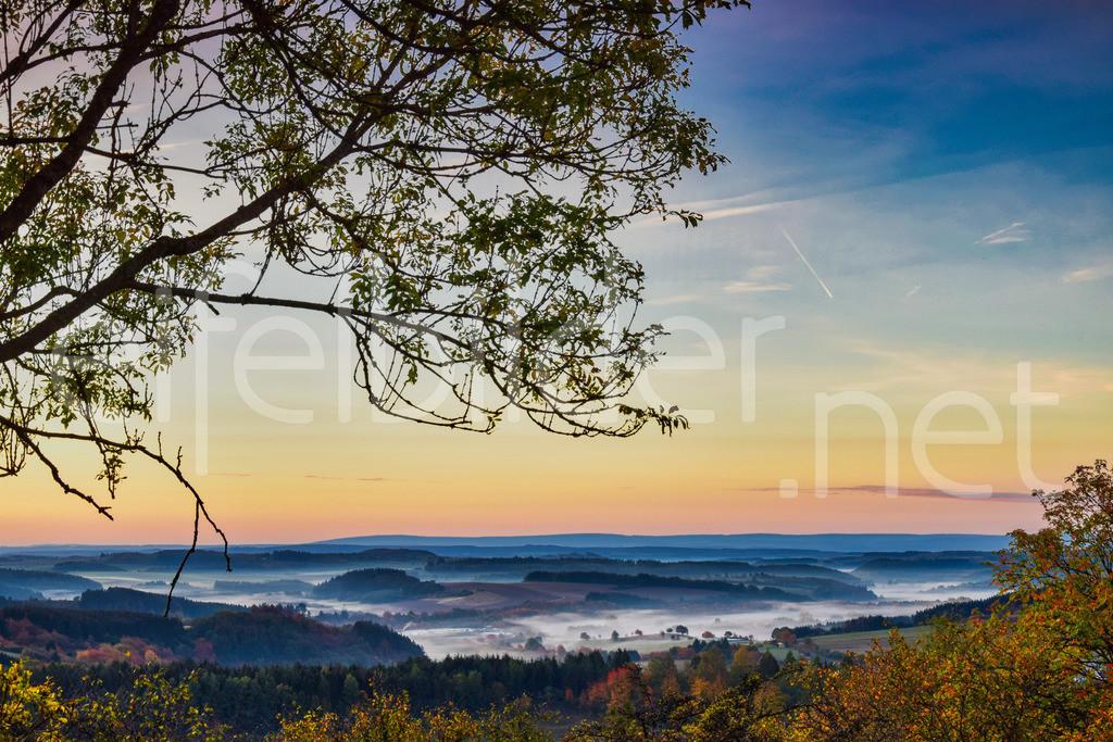 Morgenstimmung | fotografiert in Daun Schalkenmehren