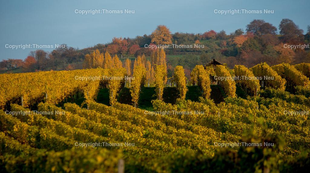 _DSC3183 | Herbst, Hessiche Bergstrasse, zwischen Bensheim, und Heppenheim,  ,, Bild: Thomas Neu