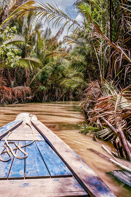 COCONUT JUNGLE | Vietnam