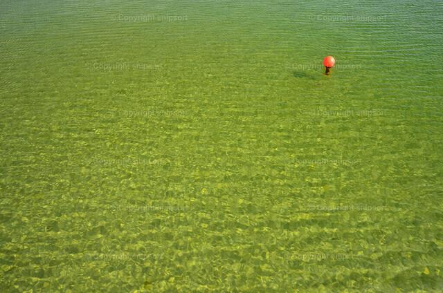 Klares Wasser mit einer Buje   Draufsicht auf klares Wasser mit einer roten Buje.