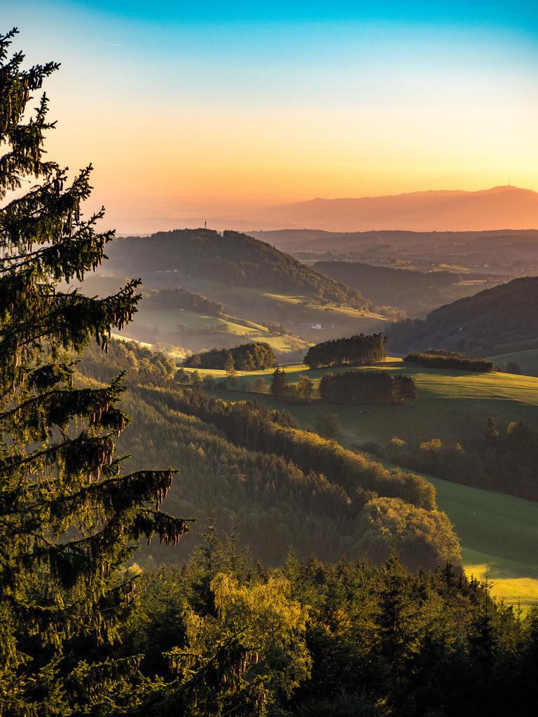 Herbst am Hünersedel | Goldene Herbststimmung am Hünersedel bei Freiamt