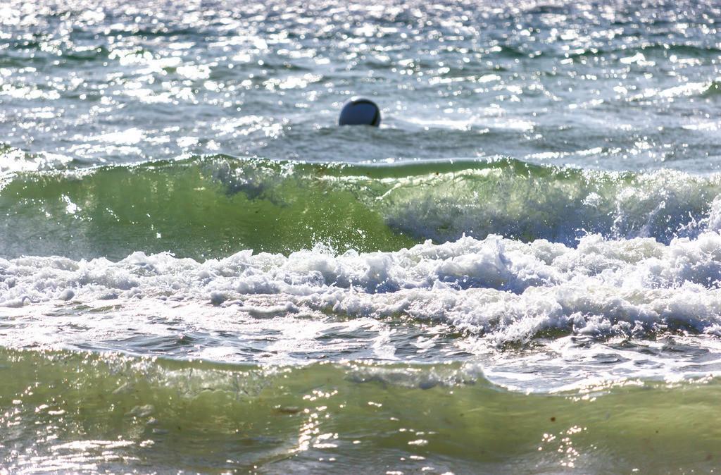 Sommer am Meer | Wellen am Strand in Weidefeld