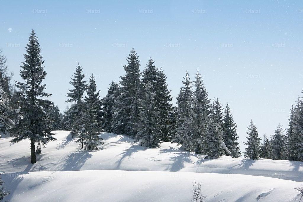 Winter-Naßfeld-3.06_032k