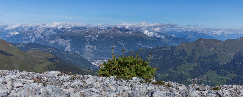 Panoramablick ins Tal