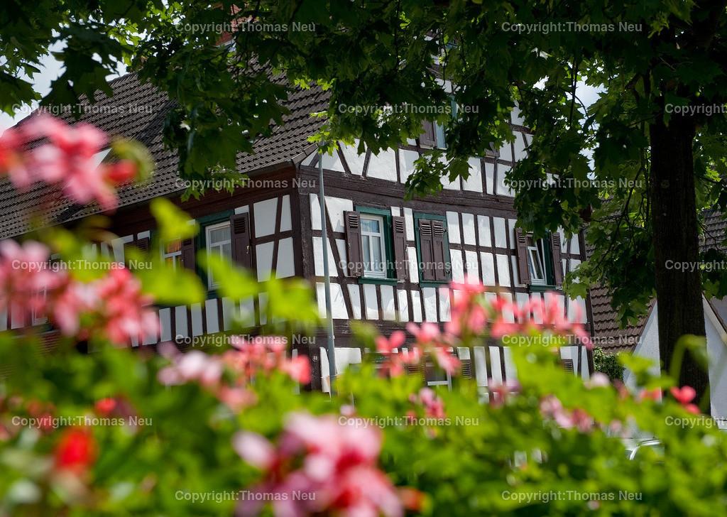 Schwanheim | 0206,Fachwerkidylle in Schwanheim,Bild: Thomas Neu