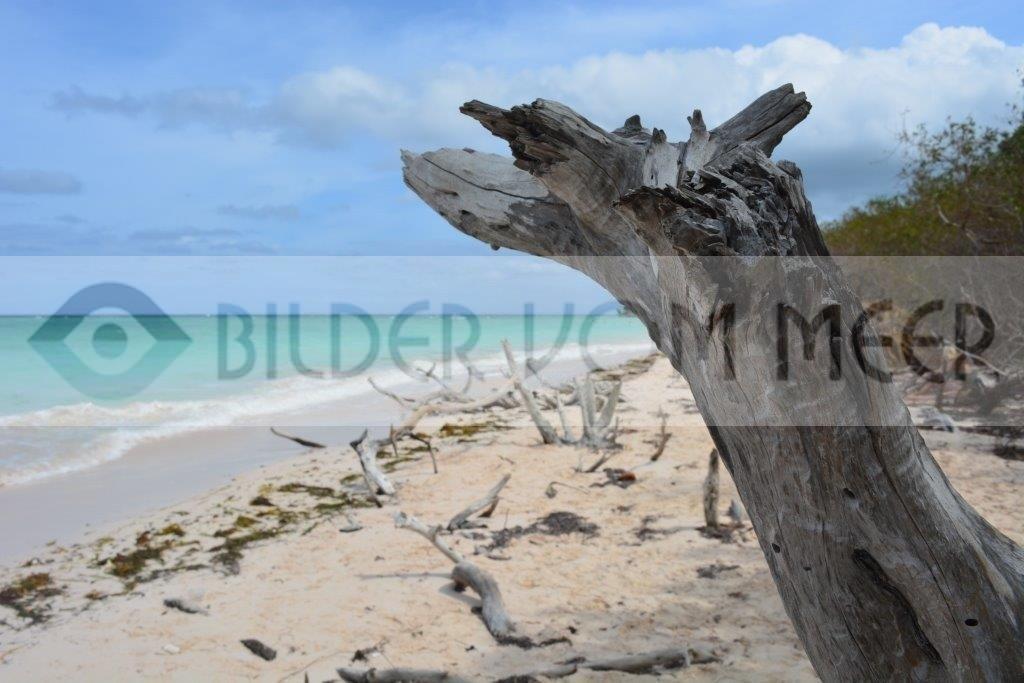 Bilder vom Meer aus Kuba   Strandbilder auf der Insel Cayo Jutías