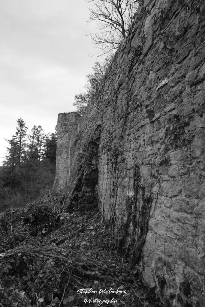DSC05662 | Die Altenbaumburg bei Altenbamberg in Schwarz-Weiss