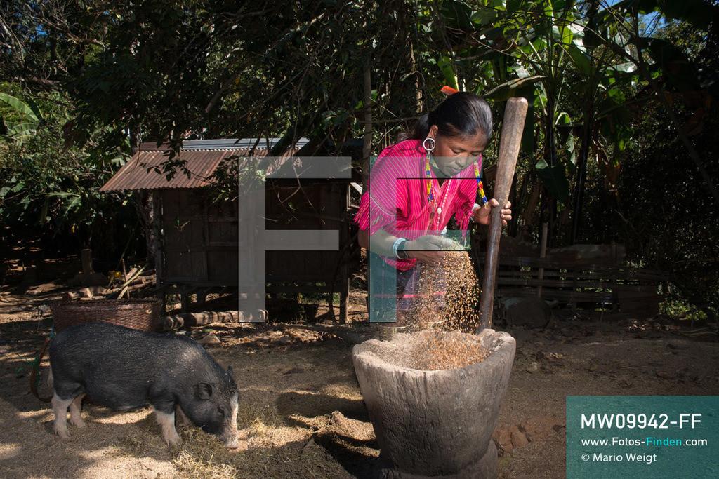 MW09942-FF | Myanmar | Loikaw | Reportage: Loikaw im Kayah State | Frau der ethnischen Minderheit Kayaw stampft Hirse im Bergdorf Htay Kho. Hirse wird für das traditionelle Bier verwendet, das bei den Bergstämmen in Myanmar sehr beliebt ist. Nur die Kayaw-Frauen tragen handgewebte Kleidung. Charakteristisch sind ebenfalls der auffallende Schmuck und die Messingspiralen an den Knien sowie Knöcheln.   ** Feindaten bitte anfragen bei Mario Weigt Photography, info@asia-stories.com **