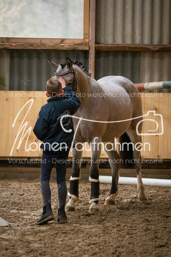 Freispringen-Pony-3j-07