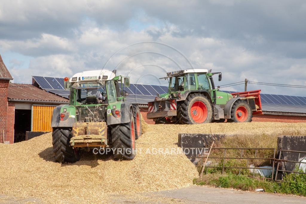 20080914-IMG_9112 | Silomais wird gehäckselt - AGRARFOTO Bilder aus der Landwirtschaft