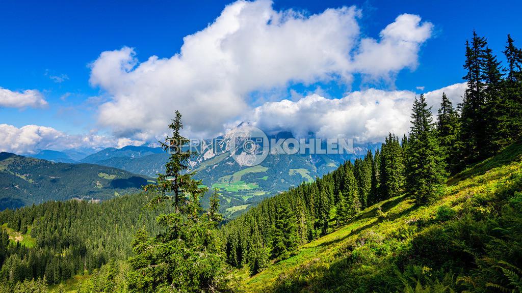 austria_sept2019-0010
