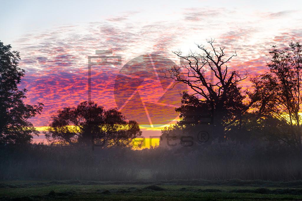 Sonnenaufgang Bad Soden-Salmünster