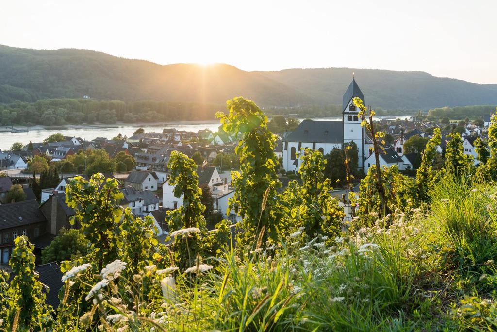 Pfarrkirche St. Laurentius, Leutesdorf | Die Serie 'Leuchtender Rhein' zeigt den Rhein in leuchtenden Farben.