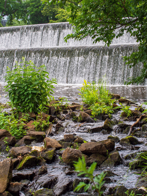 Celle (46) | Celle und Umgebung