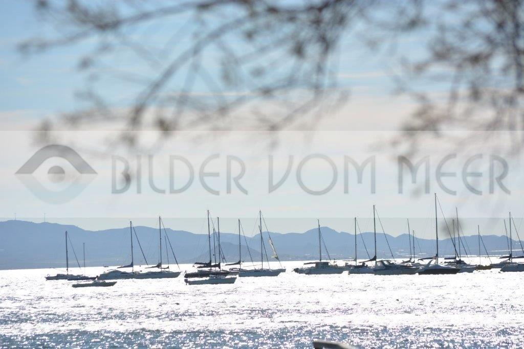 Strand Bilder | Am Hafen von San Pedro del Pinatar