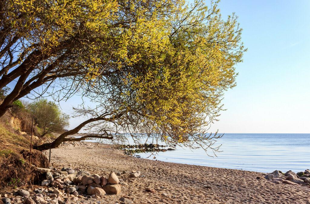 Frühling an der Ostsee | Strand in Kleinwaabs