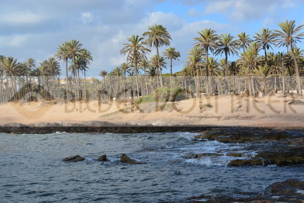 Strand Bilder | Bilder vom Strand Cala Ferris Spanien