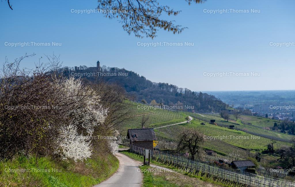 DSC_5973-HDR | Bensheim, Heppenheim, die Bergstrasse zwischen Bensheim und Heppenheim, mit Blick auf die Starkenburg, ,, Bild: Thomas Neu