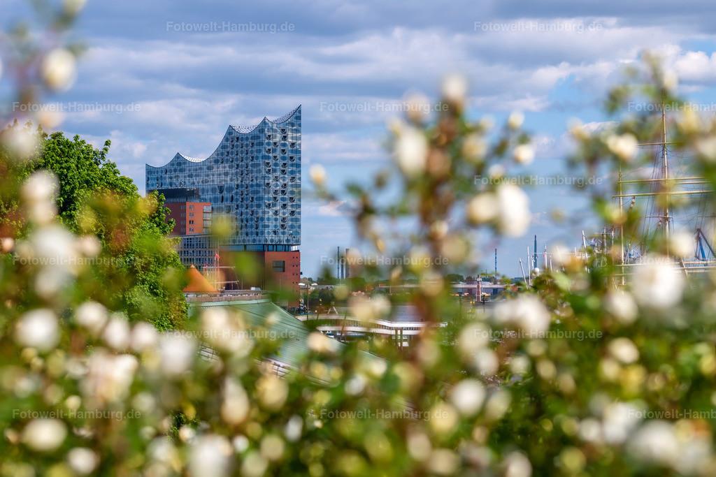 10200517 - Elbphilharmonie im Frühling | Frühlingshafter Blick von den Landungsbrücken auf die Elbphilharmonie.