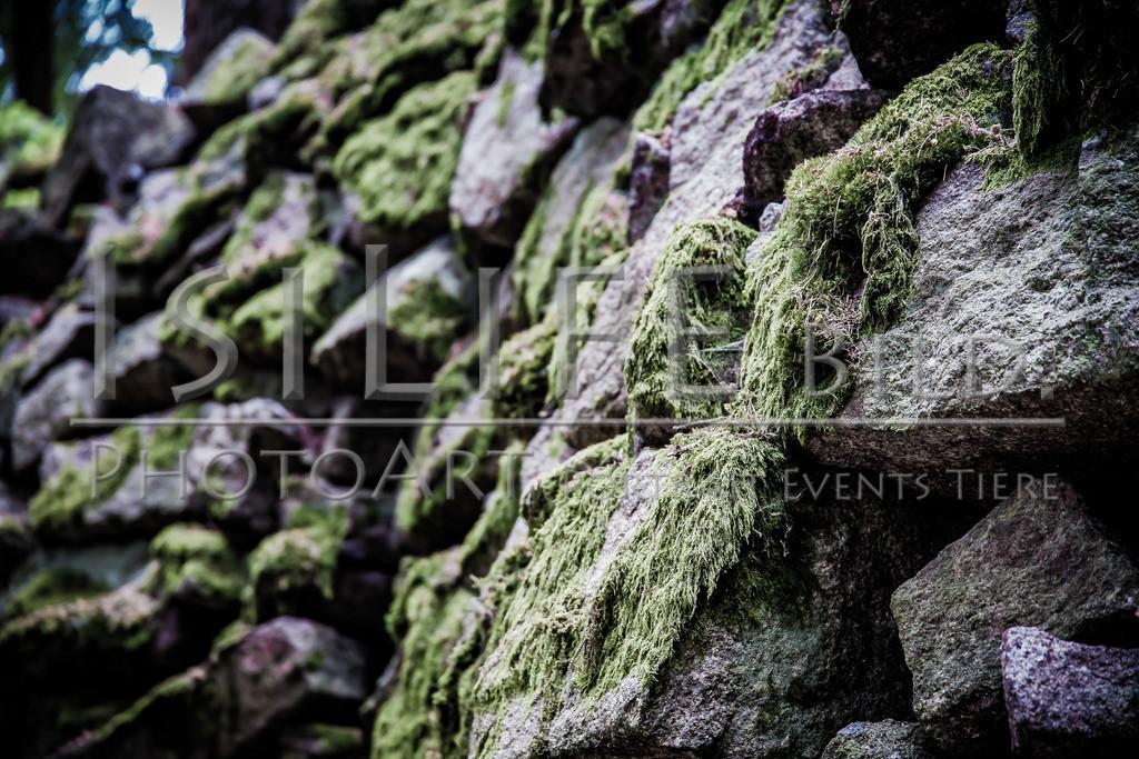 Steinbruchlehrpfad Epprechtstein im Fichtelgebirge