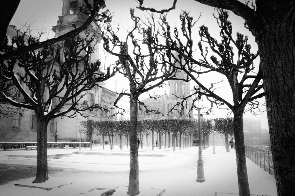 Dresden Brühlsche Terrasse   Aus der Serie