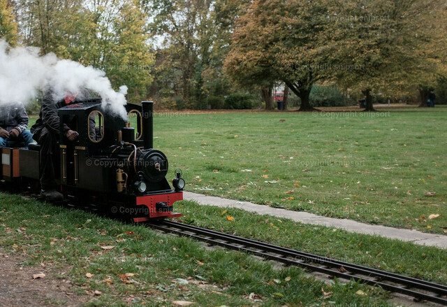 Beförderung von Personen mittels einer Gartenbahn | Beförderung von Personen mittels einer Gartenbahn mit einer Dampflok