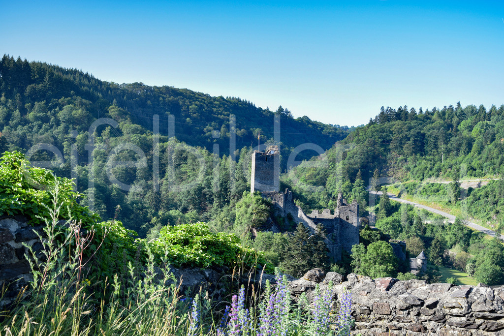 Burg Manderscheid | Die Niederburg, fotografiert von der Oberburg aus