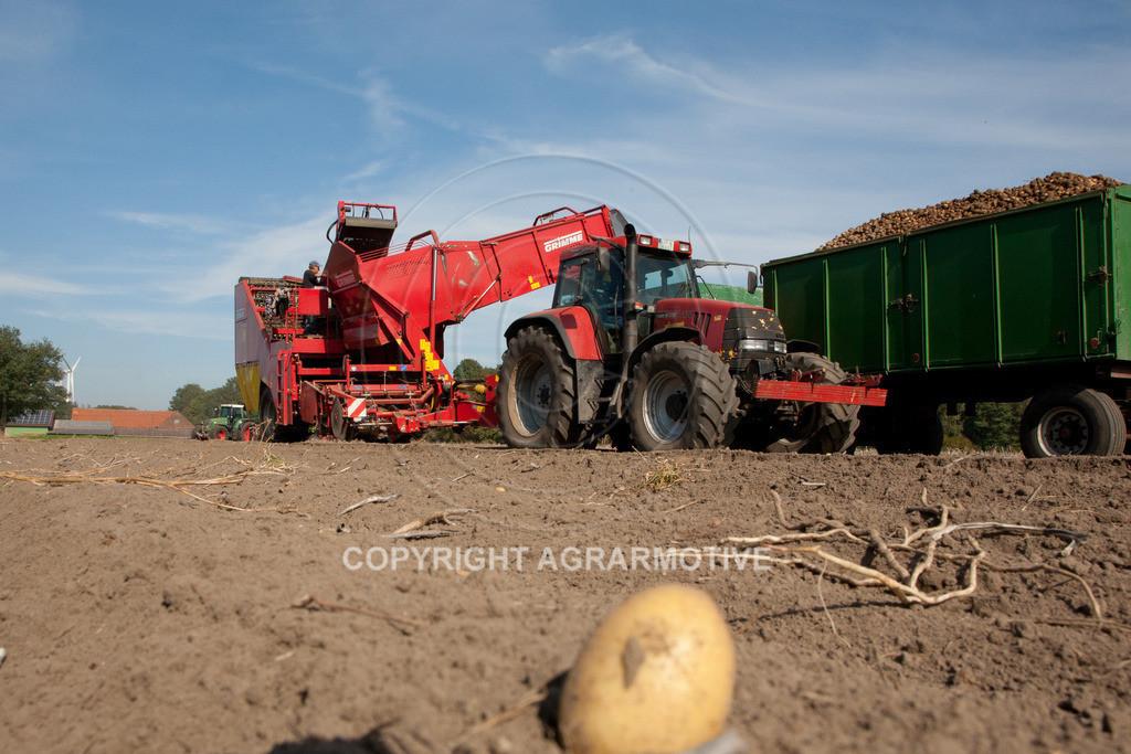20110929-IMG_5837 | Ernte auf einem Kartoffelfeld - AGRARBILDER