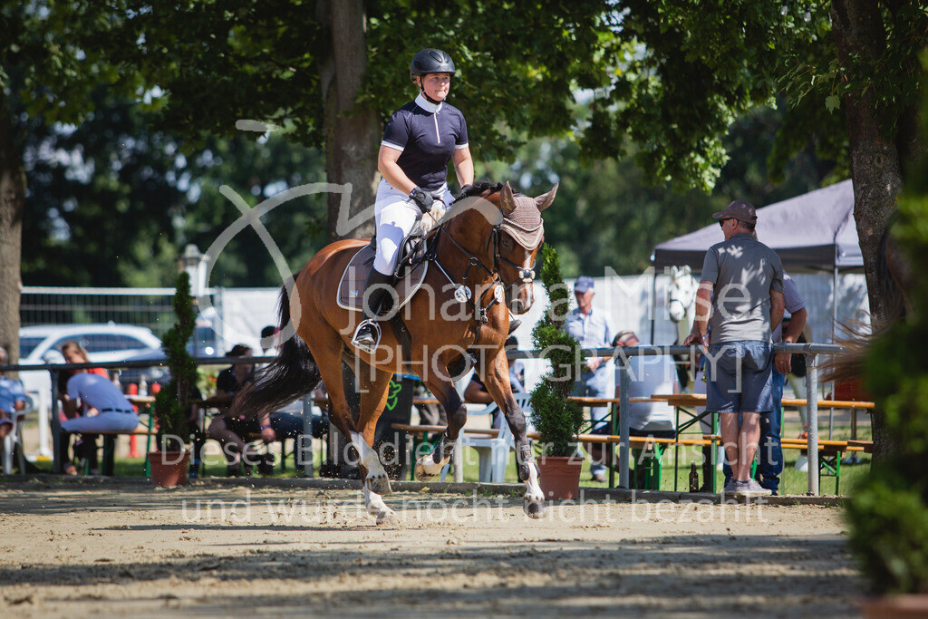 200819_Delbrück_Sprpf-A_2_1-278 | Delbrück Masters 2020 Springpferdeprüfung Kl. A** 4-6jährige Pferde