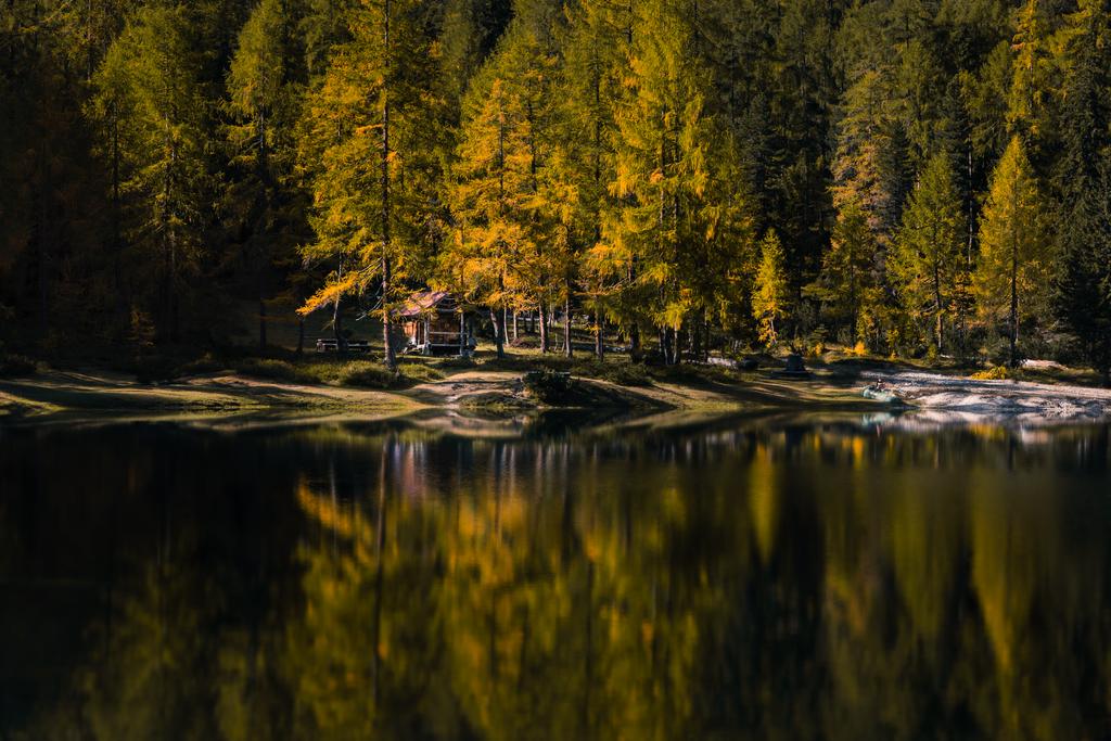 Black and Yellow | Wenn sich die Lärchen im Herbst verfärben ist es an der Zeit die zweistündige Wanderung zum steirischen Ahornsee anzutreten. Wer es gerne gemütlich angeht kann sich alternativ ein Bild vom See über der Couch aufhängen.