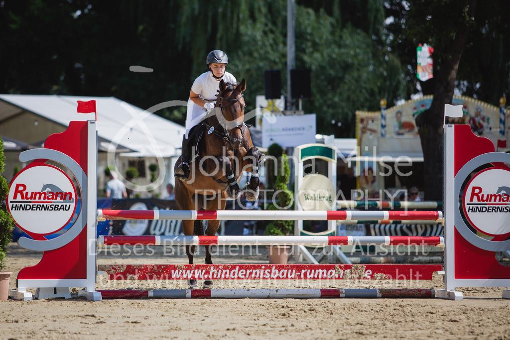 200819_Delbrück_Sprpf-A_2_1-262 | Delbrück Masters 2020 Springpferdeprüfung Kl. A** 4-6jährige Pferde
