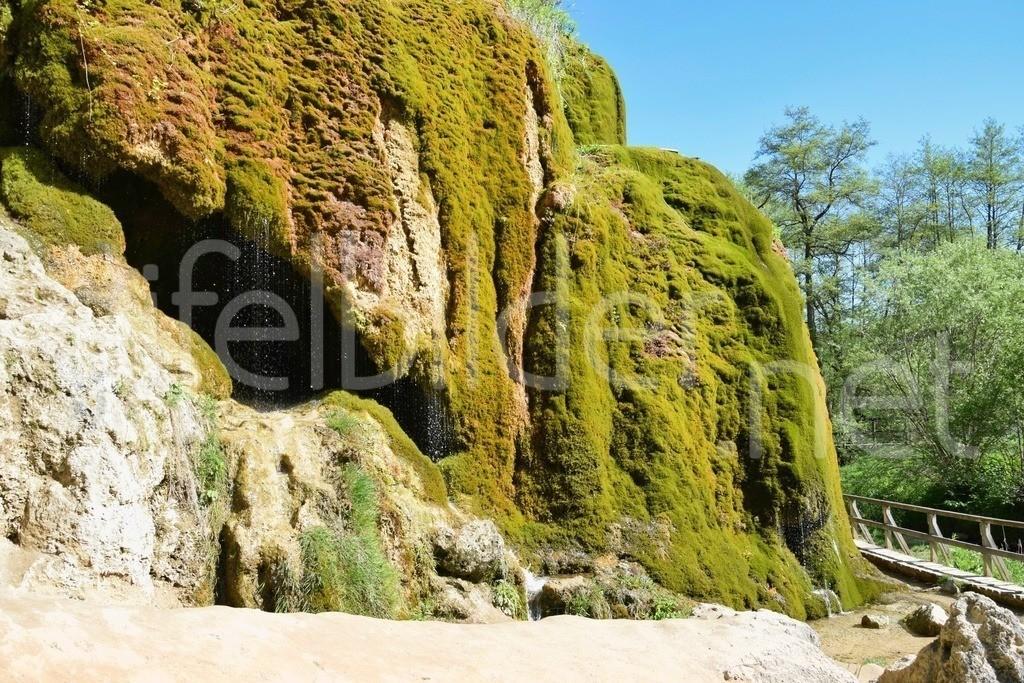 Nohner Wasserfall / Dreimühlen Wasserfall | Der Dreimühlen Wasserfall in Nohn