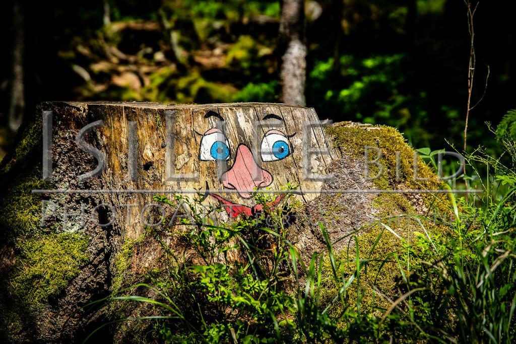 Röslau - Mittelpunkt des Fichtelgebirges | Troll am Egerfall