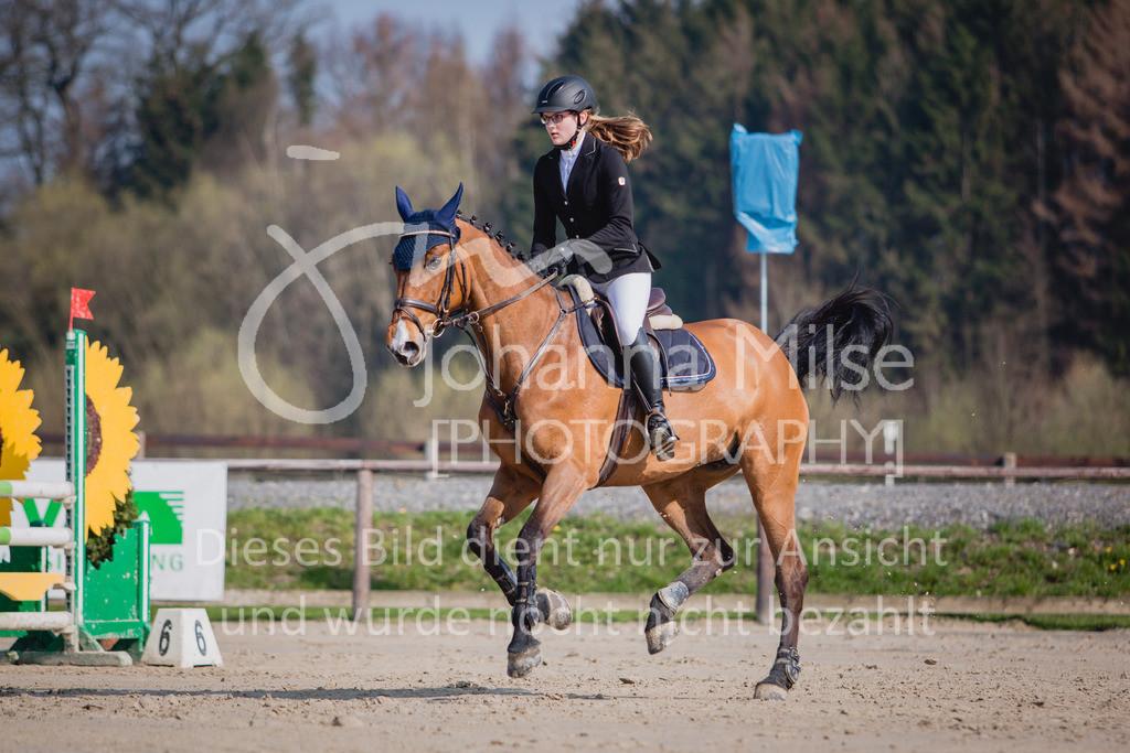 190406_Frühlingsfest_SprA-124   Frühlingsfest der Pferde 2019, von Lützow Herford, A**-Springen, RLP 10 - 32