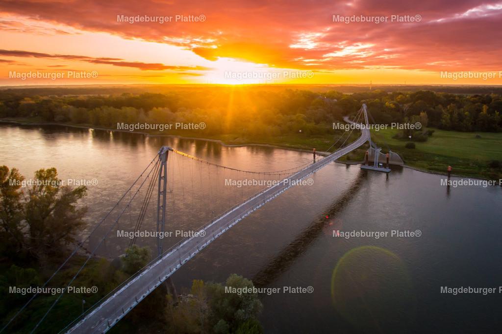 Herrenkrugbrücke Sonnenaufgang-4475