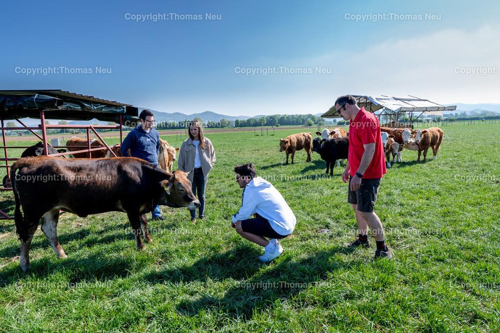 DSC_9911 | Bensheim, Schwanheim, FamilieSchweikert in Schwanheim nach 50 Jahren Viehhaltung jetzt mit ihren Rindern auf die Weiden, ,, Bild: Thomas Neu