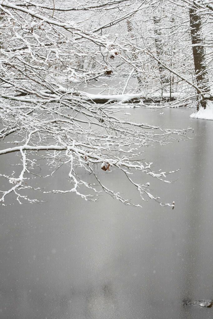 Spandau-eingeschneit (2 von 28)