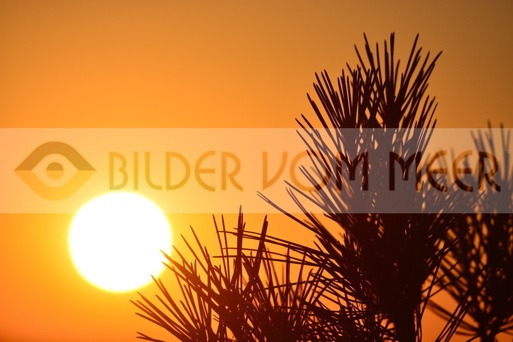Bilder Sonne | BilderSonne sonnenuntergang
