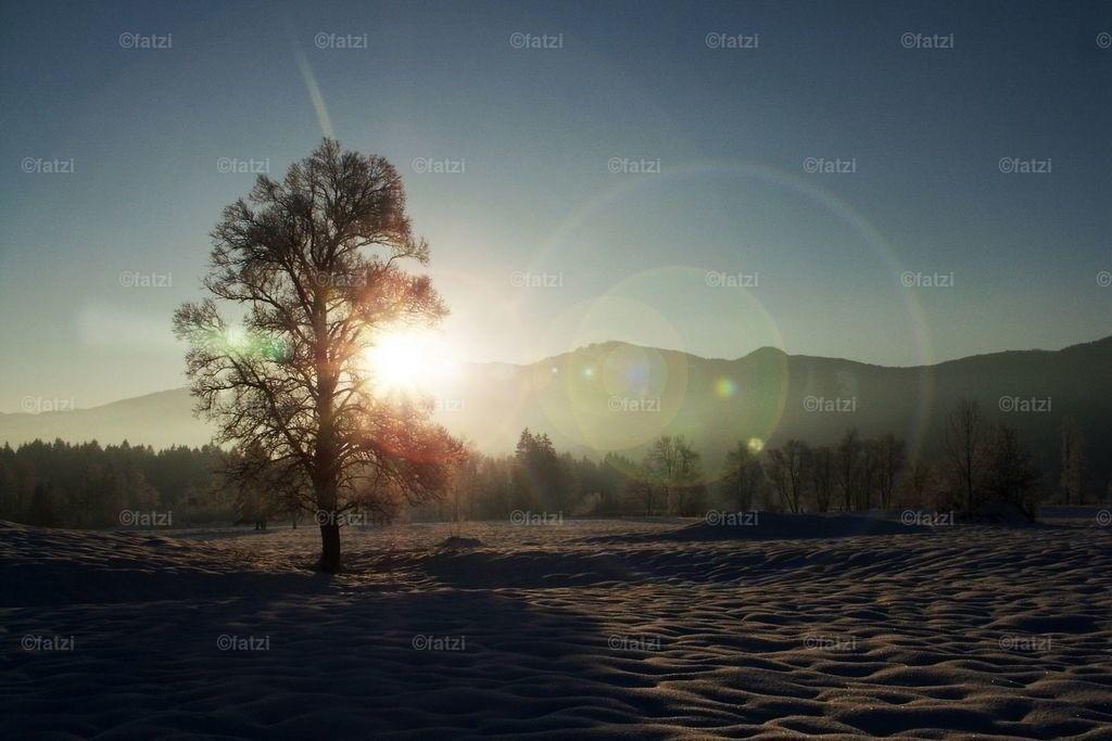 winter-halt08_025k