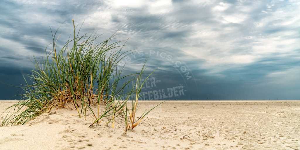 fotograf sankt peter-ording mobbys-pics.com_DSC5766-HDR-Bearbeitet | Dünengras und Wolkenspiel