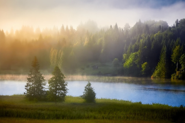 Mystischer Morgen am See | An diesem Morgen hatte die Sonne schwer mit Nebel und Wolken zu kämpfen. Alle Fotografen an diesem landschaftlichen