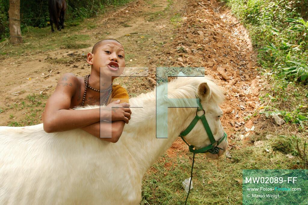 MW02089-FF | Thailand | Goldenes Dreieck | Reportage: Buddhas Ranch im Dschungel | Der junge Mönch Pansaen mit seinem Pferd Phet Thewada  ** Feindaten bitte anfragen bei Mario Weigt Photography, info@asia-stories.com **