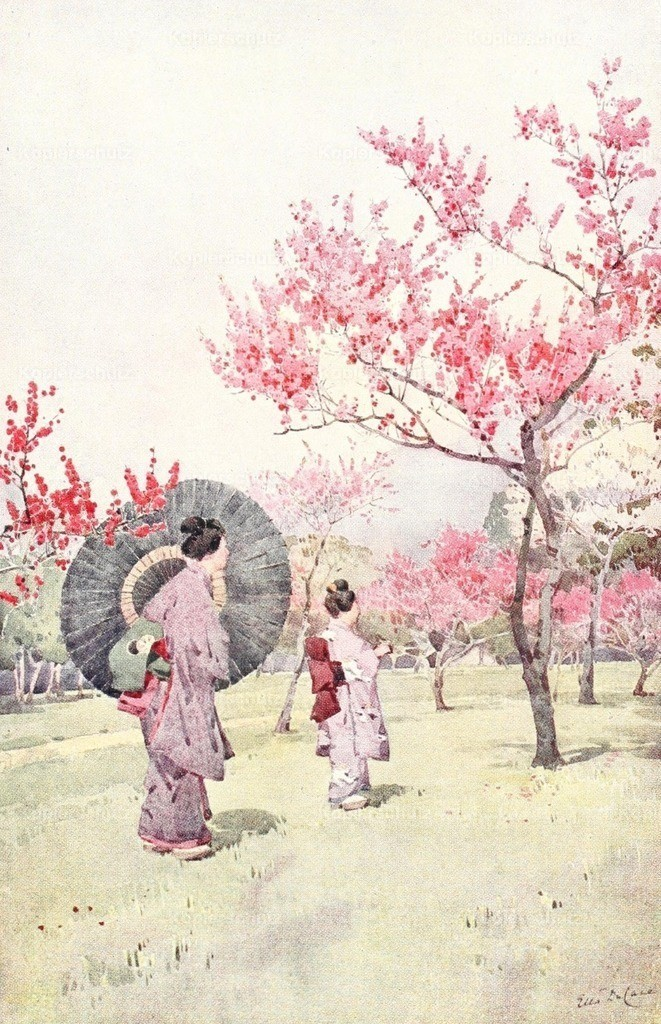 Du Cane_ Ella (1874-1943) - Flowers _ Gardens of Japan 1908 - Peach blossom