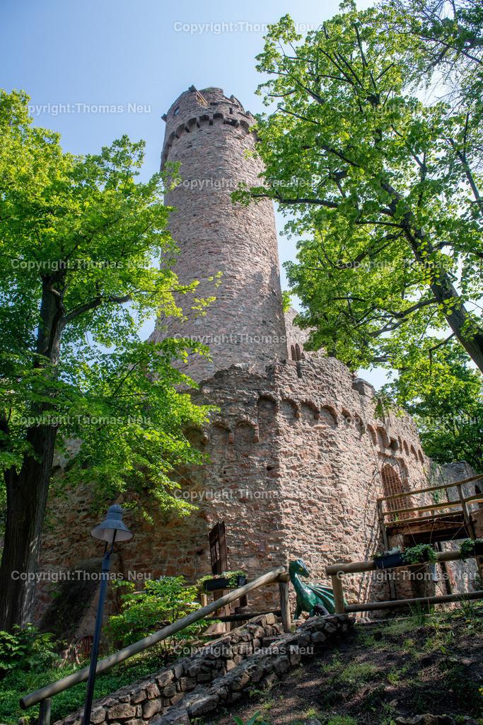 DSC_0104 | Bensheim, Auerbach, Schloss Auerbach, Burg, Mittelalter, Ruine, ,, Bild: Thomas Neu