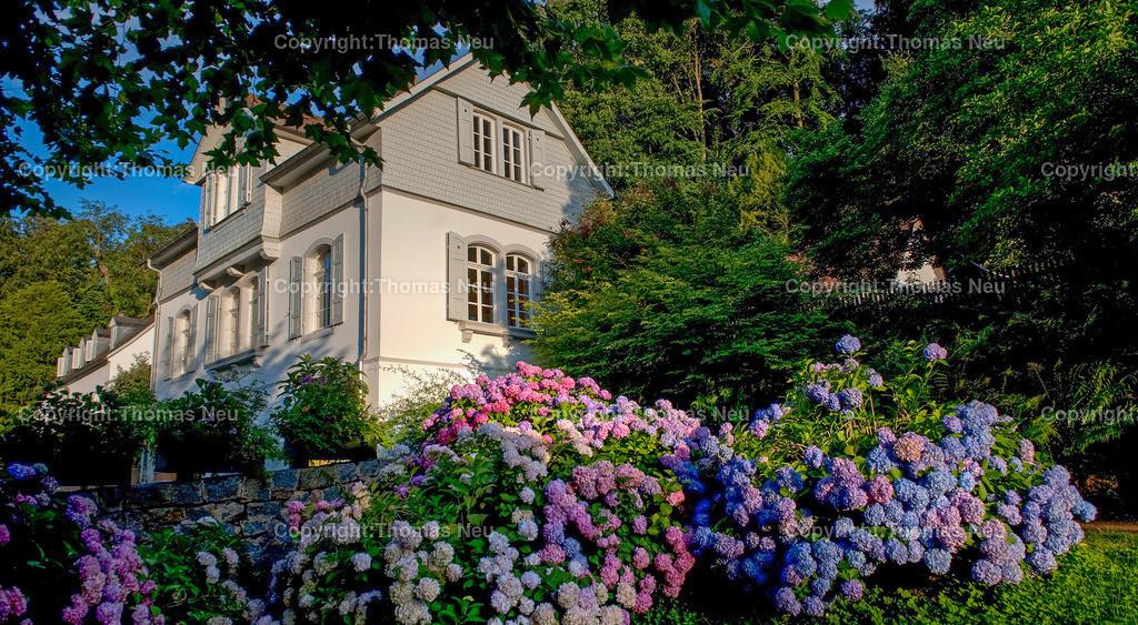 07_Juli_17 | Bensheim,Auerbach, staatspark Fuerstenlager, ,, Bild: Thomas Neu