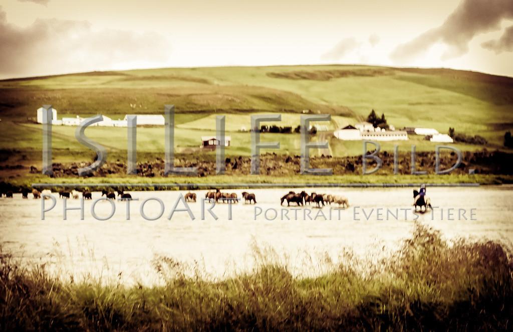 Flussdurchquerung | auf Island
