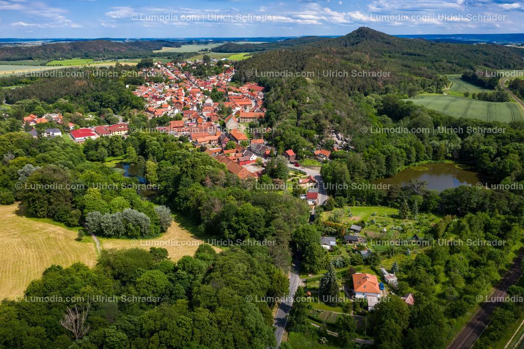10049-50472 - Langenstein bei Halberstadt